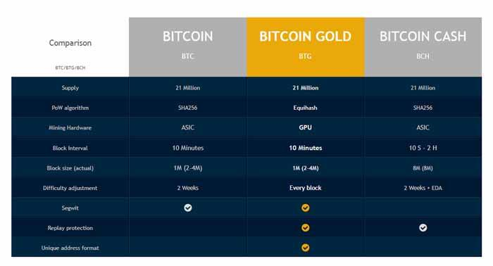 bitcoin gold nodes list kryptowährung, wie viel gewicht investiert werden muss, um zu setzen